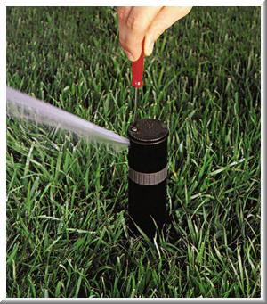 adjusting_spray2