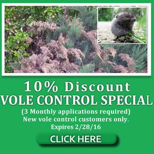 voles use