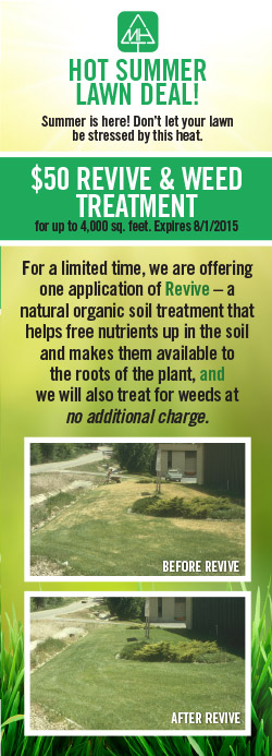 Revive and weeds